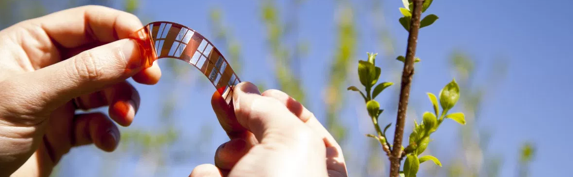 Ribes Tech photovoltaic film