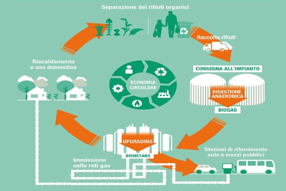 trattamento rifiuti organici