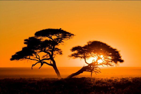 Elektrifizierung von Afrika mit erneuerbaren Quellen: Wie weit sind wir?